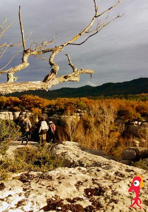 Promenades sonores en Provence Verte